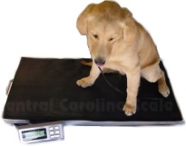 Digital Vet Veterinary Scales Dog Animal LVS-700