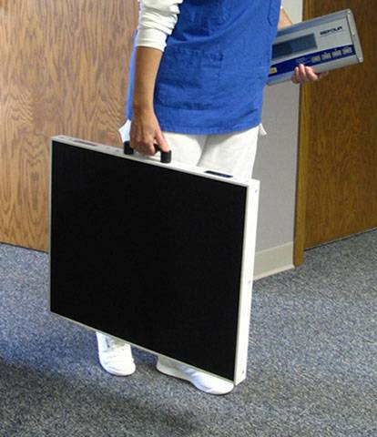 large capacity scale with carry handle