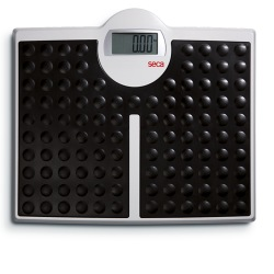 Seca 813 Robusta Bathroom Digital Scale