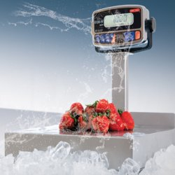 Tor-rey EQB-20/40-W Digital Water Resistant Scale