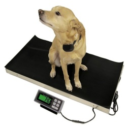 tree-lvs-700-vet-scale-for-dogs
