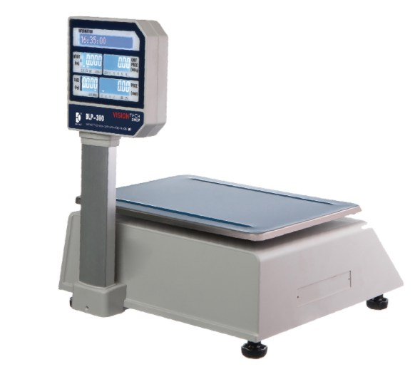 visiontechshop dlp-300 scale customer view